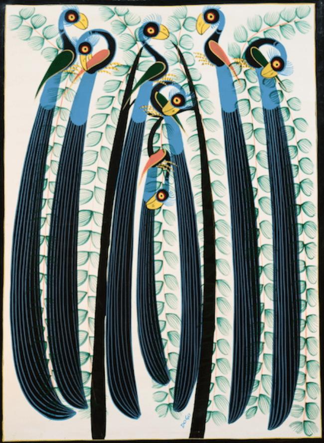 Синий тукан (птица)